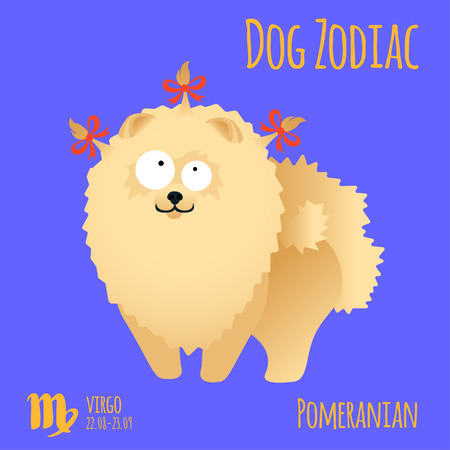 Illustration of a zodiac sign with a funny dog. Pomeranian Virgo Vettoriali