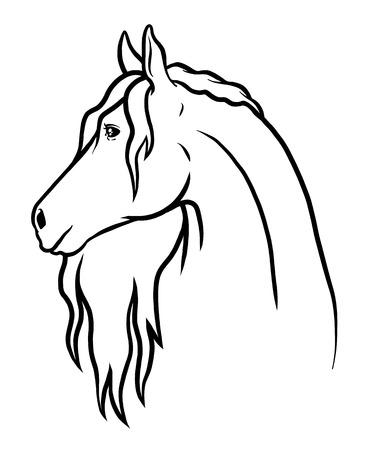 Vector and Drawn doodle horse. Coloring card and shirt art for girl isolated on white