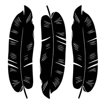 Banana palm leaf black monochrome silhouette illustration