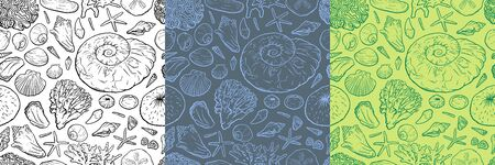 Hand draw seanless pattern with sea shells, ammonite, stars corals and pearls different shapes. for girls, boys, clothes. Funny Ocean wallpaper for textile and fabric. Paleontology style Vektorové ilustrace
