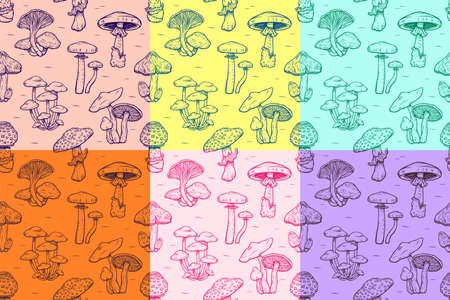 Seamless pattern of Forest types of poisonous mushrooms collection, edible and non-edible boletus in retro sketch style wallpaper for textile and fabric. Fashion style. Colorful bright.