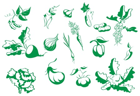 the sprouting: Set of contour vegetables