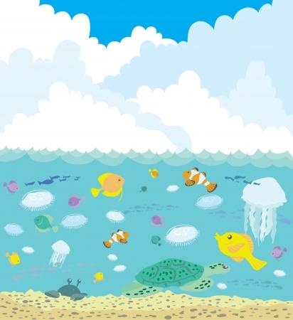 large turtle: Under sea
