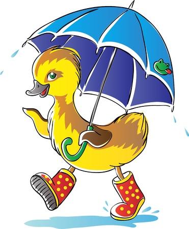 rain boots: Duckling
