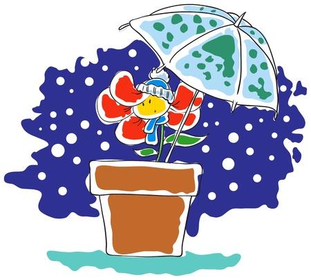 anthropomorphous: Snow and flower