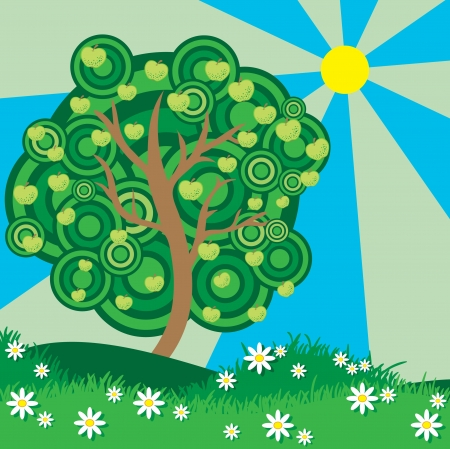 Summer apple tree  Vector
