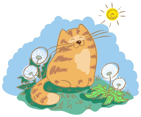 Cat sitting in the meadow with dandelions  Cat is squinting against the sun Stock Vector - 18827007