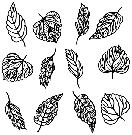 Twelve different ornate black leaves for your design isolated on white background.