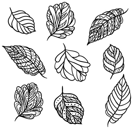 Nine different ornate black leaves for your design isolated on white background.