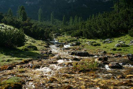 cours d eau: Ruisseau de montagne