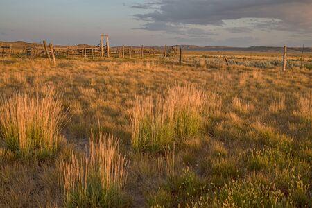 Old Corral at Grasslands National Park Reklamní fotografie