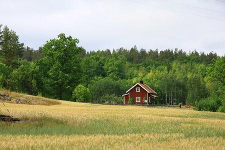 farm Standard-Bild