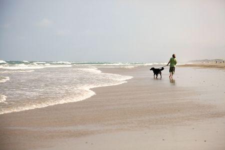 dog rock: beach Stock Photo