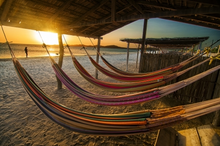 Hammocks on a beach at sunset  photo