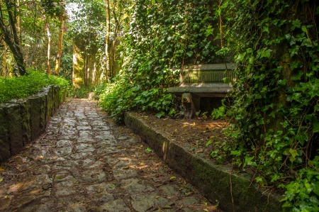 A stone path winding through a park in Bogota, Colombia photo
