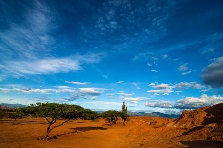 A dry desert landscape shot near dusk