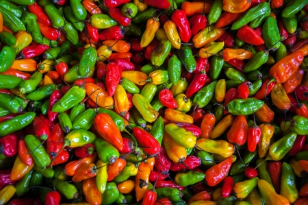 latin food: Red, orange, yellow, and green chili peppers
