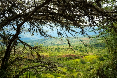 santander: View of a valley with tree branches in the foreground Stock Photo