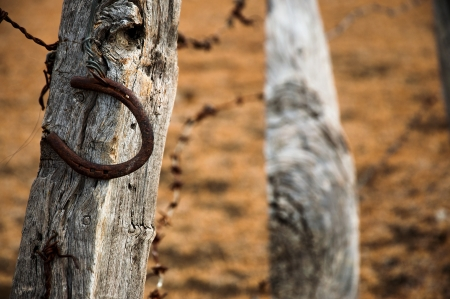 fencepost: An old rusty horshoe on a weathered fence post