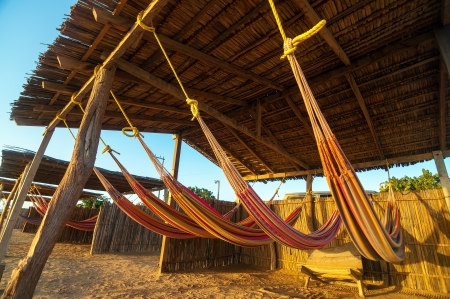 Colorful hammocks on a beach bathed in golden light photo