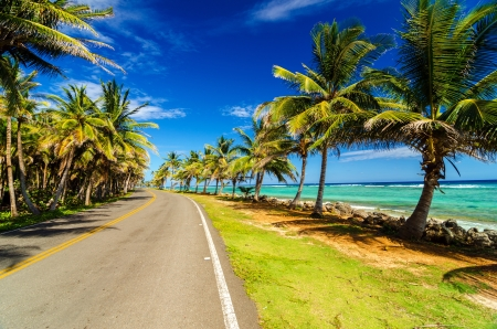 Highway next to turquoise Caribbean sea and palm trees in San Andres, Colombia photo
