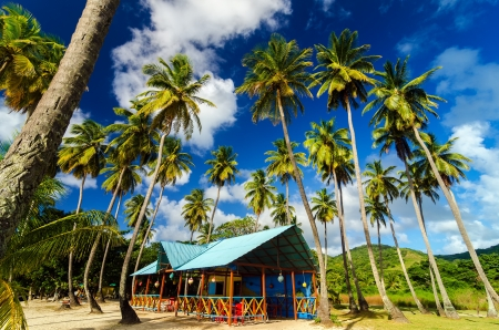 A colorful restaurant on a beach surrounded by palm trees on a Caribbean island
