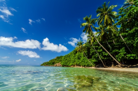 Crystal clear water next to beautiful secluded white sand beach in San Andres y Providencia, Colombia