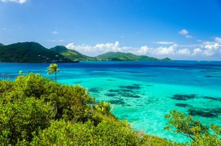 綠松石加勒比海水和綠意盎然的熱帶島嶼