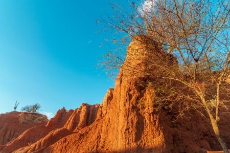 huila: Tatacoa desierto en el Huila, Colombia con la luz del sol de oro hermosa