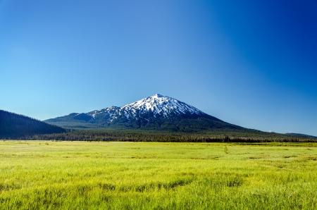 oregon  snow: Snowy Mount Bachelor rising above a lush green meadow near Bend, Oregon Stock Photo