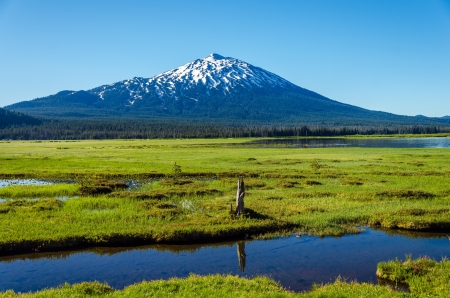 oregon  snow: Mount Bachelor viewed from a lush green meadow in Central Oregon