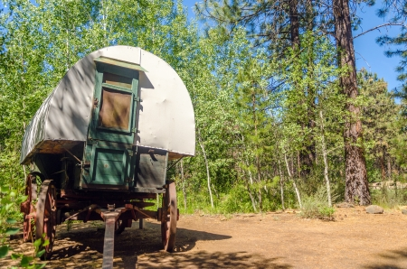 covered wagon: Old West style covered wagon in a forest in Central Oregon Stock Photo