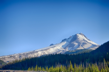 mt  hood national forest: Mt  Hood as seen from the south side in Oregon