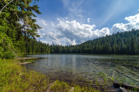 Upper Twin Lake in the Mt  Hood National Forest photo