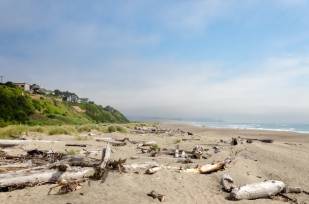 Driftwood covered beach at Lincoln City, Oregon photo