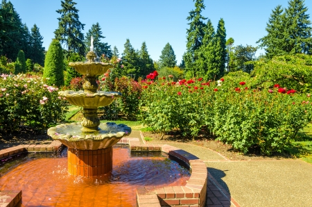 fount: Fount in the Portland Rose Garden Stock Photo
