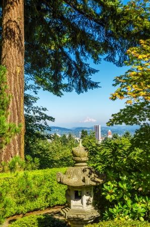 mt hood: Cityscape of Portland, Oregon framed by a tall pine tree