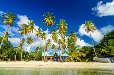 island: Colorful shack on a beach surrounded by palm trees in San Andres y Providencia, Colombia