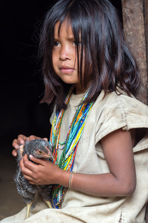 inhabits: MAGDALENA, COLOMBIA - FEBRUARY 6  An indigenous Wiwa girl sits with her chicken in the Magdalena Department in Colombia on February 6, 2014   The Wiwa tribe inhabits the foothills of the Sierra Nevada de Santa Marta Mountain Range