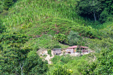 Small shack on a hill in Magdalena, Colombia with crops high up on the hill photo