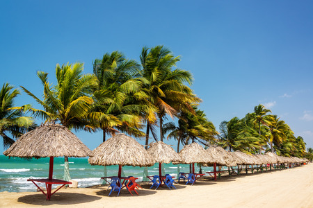 Row of palm trees and tables to relax at on the Caribbean coast in Covenas, Colombia Stok Fotoğraf