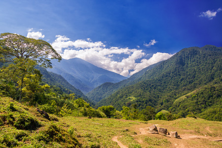 콜롬비아 해안 근처의 시에라 네바다 데 산타 마르타 산맥 무성 한 녹색 언덕