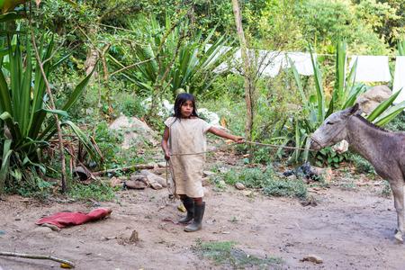 Kolumbien esel tradition
