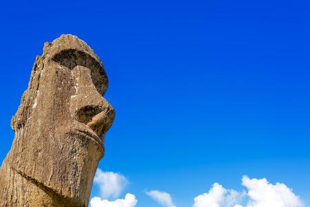 rano raraku: A moai on Easter Island with beautiful blue sky behind it