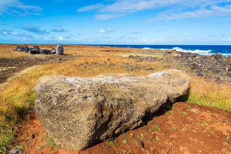 rano raraku: Damaged Moai on Easter Island lying facedown near the shore line