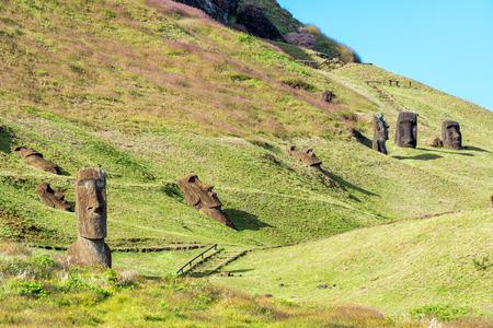 moai: Nueve Moai diferente visible en el sitio histórico de Rano Raraku en Isla de Pascua Foto de archivo