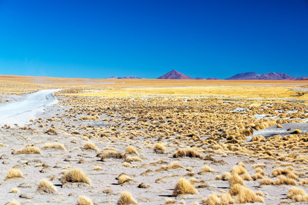 atacama: High plains in Uyuni, Bolivia with volcanoes in the background