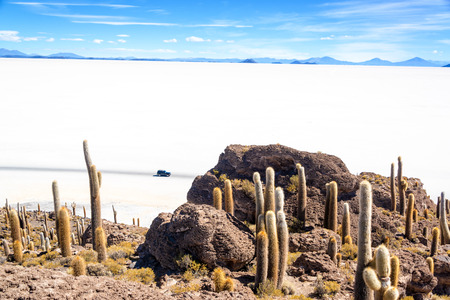 incahuasi: View of the Uyuni Salt Flat as seen from Incahuasi Island with and SUV passing by Stock Photo