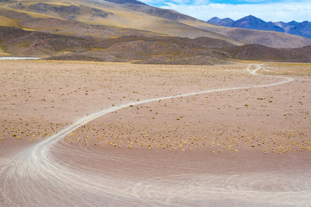 atacama: Tire tracks in the high plains desert near Uyuni, Bolivia