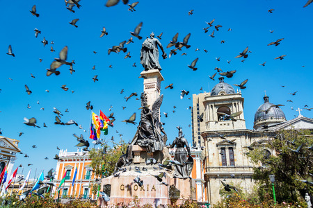 murillo: Pigeons flying around Plaza Murillo in La Paz, Bolivia
